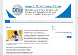 web_ob12